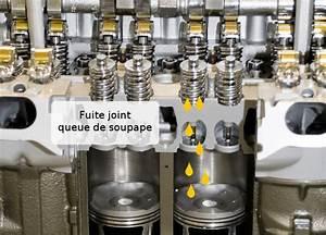 Joint De Queue De Soupape : huile qui sort de l 39 chappement les causes vous constatez de l 39 ~ Gottalentnigeria.com Avis de Voitures