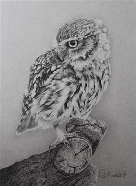 realistic pencil drawing  clive meredith art kaleidoscope