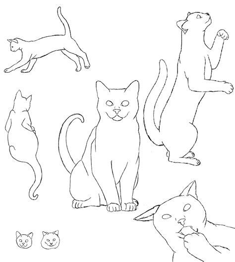 cat profile  smirks  deviantart