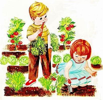 Garden Clip Vegetable Clipart Clipartix