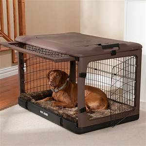 Plastic large dog crate invisibleinkradio home decor for Beautiful dog crates