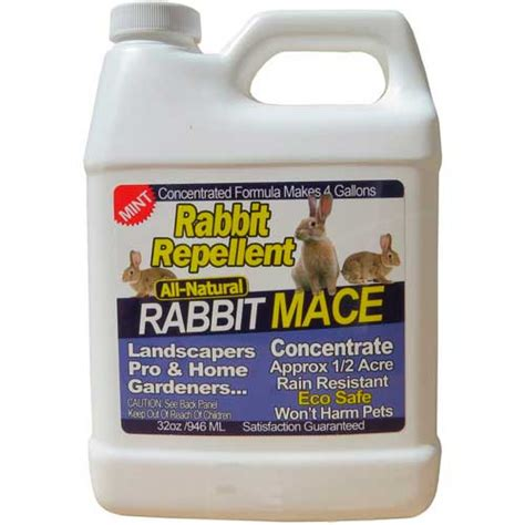 top 10 best rabbit repellents and deterrents review