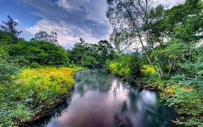 Nature Landscape Summer River Flowers Meadow Coast