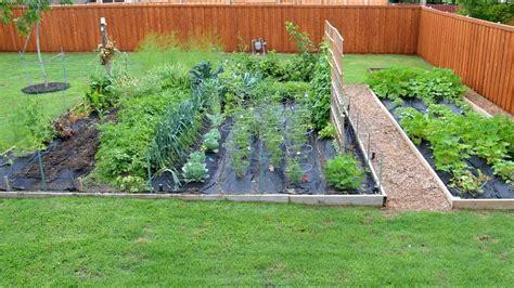 Garden Vegetarian - chef s vegetable garden update