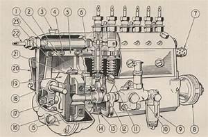 Cav Pump Manual