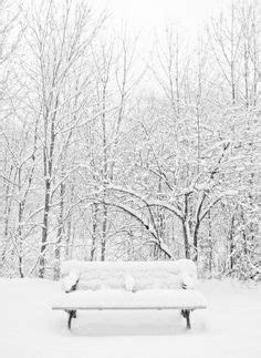 First snow on red bench in garden 11'12! | WInter Garden