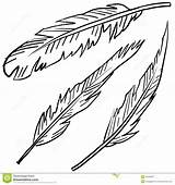 Coloring Indian Feathers Feather Printable Getcolorings sketch template