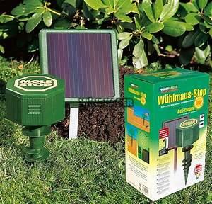 Produit Anti Taupe : avis anti taupes solaire de la marque windhager anti taupes ~ Premium-room.com Idées de Décoration