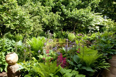 Garden Types : Types Of Garden Shade (in Pictures)
