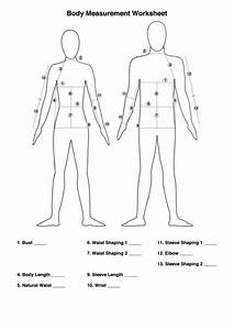 Top 6 Unsorted Body Measurement Charts Free To Download In