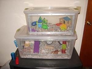 plastic hamster cage