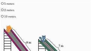 Estimate Lengths  Practice