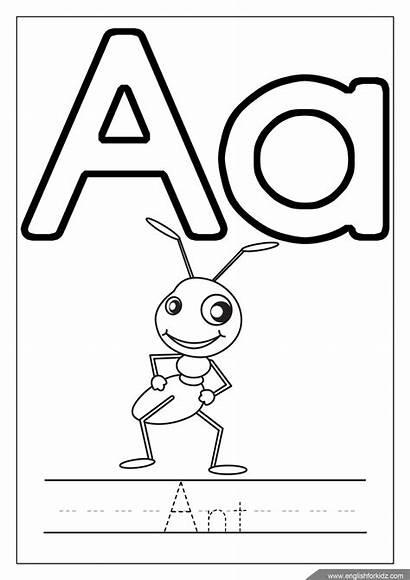Coloring Alphabet Abc Letter Printable Worksheet Letters