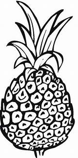 Pineapple Coloring Pages Printable Outline Spongebob Template Getcoloringpages Getdrawings Drawing Bestcoloringpagesforkids sketch template