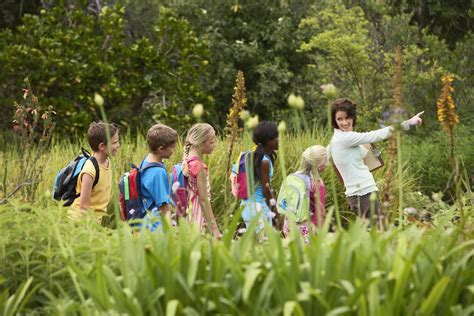 Field Trip Safety Tips to Keep Kids Safe