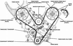Solved  Serpentine Belt Diagram 1993 Chrysler Lebaron