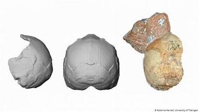 Oldest Remains Outside Europe Africa Human Found