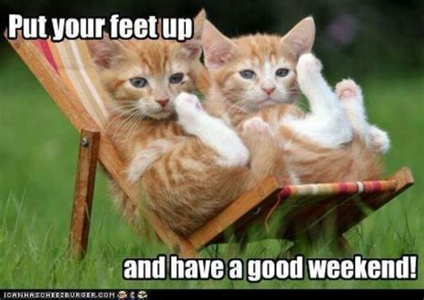 Funny Weekend Meme - have a good weekend memes cuteness and random pinterest have a good weekend