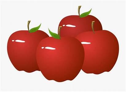 Apples Apple Clipart Teacher Clipartkey