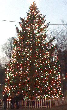 christmas tree food water boston halifax relations