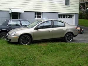 2003 Dodge Neon Sxt  2003 Dodge Stratus Sedan