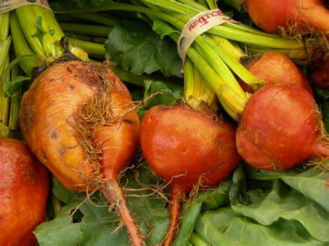 Fileredorange Root Vegetable 01jpg