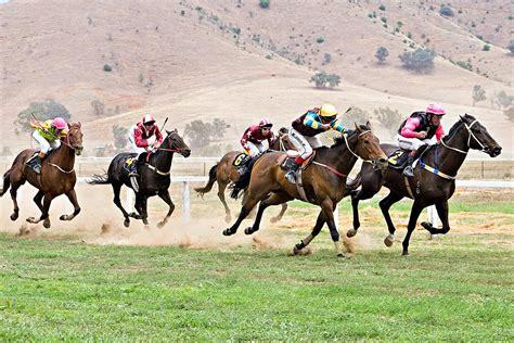 Picnic Horse Racing