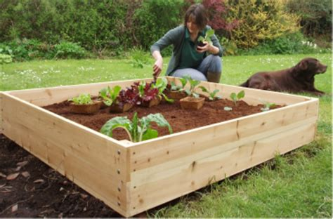 beds plans raised beds raised gardens beds gardens