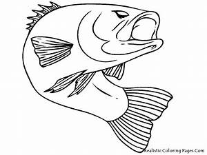Bass Fish Realistic Coloring Pages | Coloring Pages ...