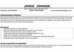 Resume Profile Statement Examples Resume Summary Examples Sample Doc Executive Resume Professional Resume Samples Resume Profile Summary Sample Resume Summary Statements In Examples Resume Examples Sample Profile Statements For Resumes Personal Suhjg
