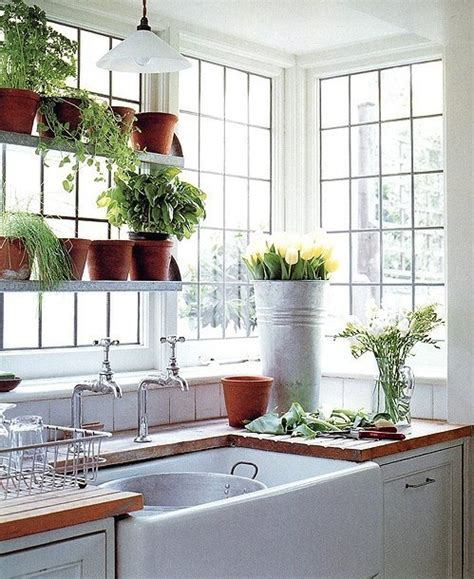 Growing Herbs In Kitchen Window by 1000 Images About Growing Herbs Indoors On