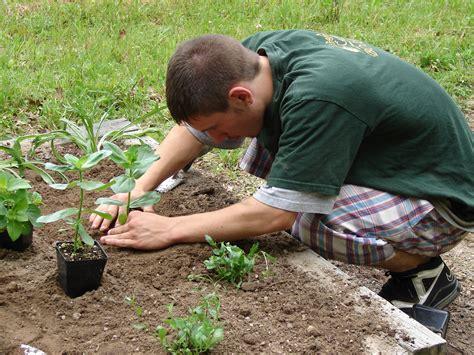 planting a garden gardening carolina cooperative extension