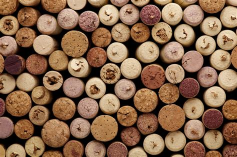 chicken coop ideas remodelaholic 25 wine cork diy ideas
