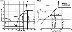 A  Phase Diagram Of The Cacl2