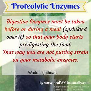 New Evidence Reveals The Importance Of Digestive Enzymes