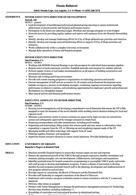 Executive Director Resume by Senior Executive Director Resume Sles Velvet