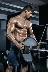 Male Bodybuilder  Fitness Model Trains In The Gym Stock Image