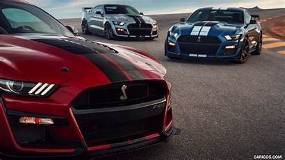 Mustang Gt500 Shelby Ford Cars