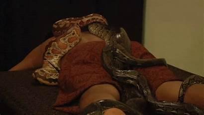 Snake Massages Snakes Massage Horrifying Utterly Really