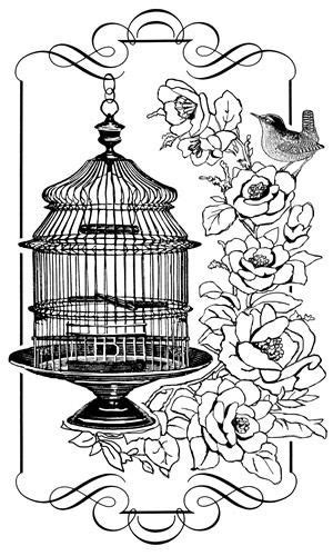 pin  yequan   bird cage coloring pages