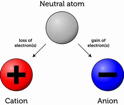 Neutral Charge Charged Atoms Ions Electrons Electrically