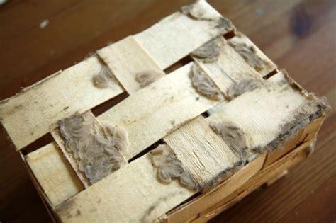 overcoming a pantry moth plague no ordinary homestead