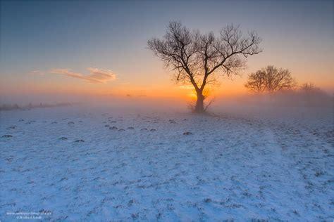 wintermorgen forum fuer naturfotografen