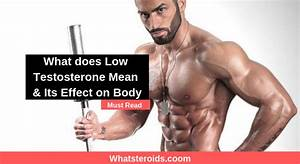 What Does Low Testosterone Mean  U0026 Its Effect On Body