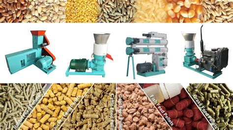 pellet machinery for sale as animal feed aquafeed pellet equipment