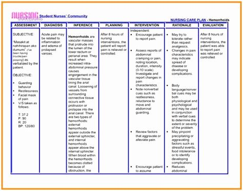 nursing care plan template word 12 nursing care plan format template ptere templatesz234