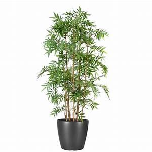 Plante Exterieur Artificielle : plante exterieur artificielle photos de magnolisafleur ~ Teatrodelosmanantiales.com Idées de Décoration