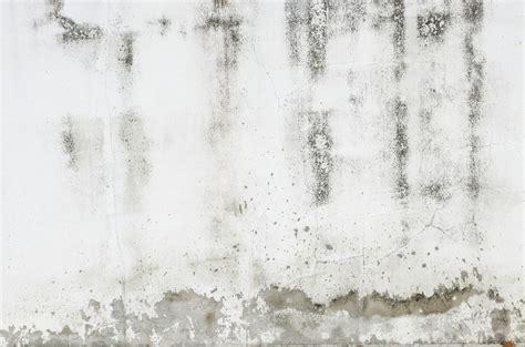 Nasse Wände Behandeln by Feuchte W 228 Nde Sanieren 187 Die Ma 223 Nahmen Im 220 Berblick
