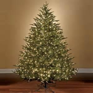 the world s best prelit fraser fir bulb artificial christmas tree clear lights ebay