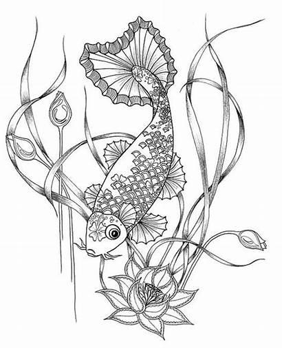 Koi Coloring Fish Pages Carp Japanese Drawing